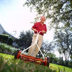Push mowers use only muscle for fuel.