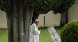 "The pope in his encyclical ""Laudato Si', on Care for Our Common Home,"" released June 18, said all cr eation is singing God's praise but people are silencing it. Photo: CNS/Paul Haring"