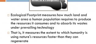Ecological footprint measures