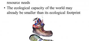 Ecological footprint represents
