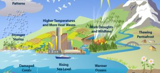 Effects and causes of global warming