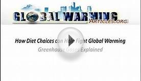 Global Warming Articles
