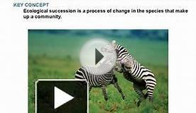 KEY CONCEPT Ecological succession is a process of change