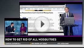 Should we kill off all mosquitoes in the world?
