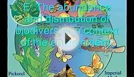 What is Ecology.wmv