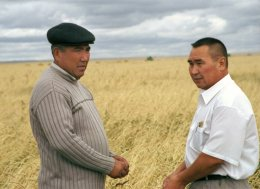 Wheat farmers in Kazakhstan are learning about the expected climate change impacts on their crop.